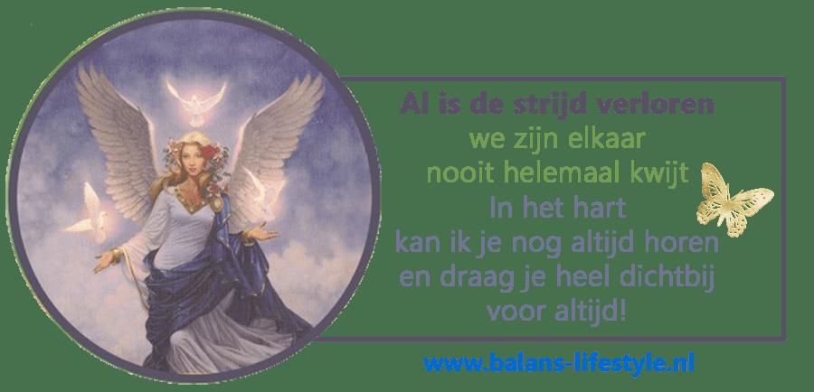 Aartsengel Haniël, tweelingzielen, totemdieren, overleden, engelen