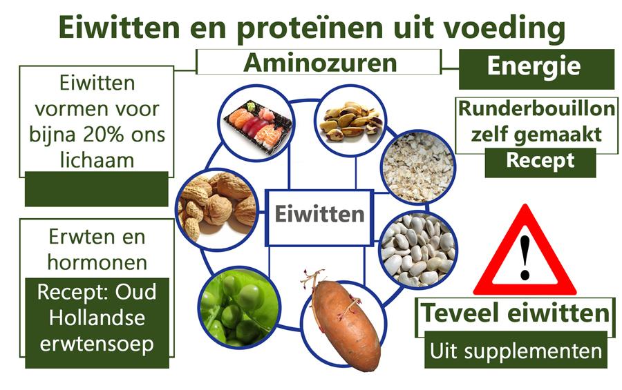 Eiwitten en nutriënten